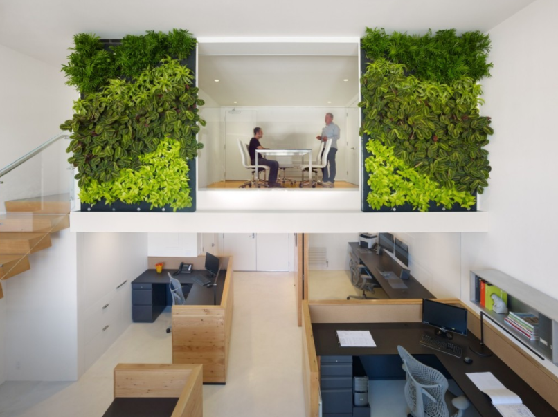 eco-friendly office